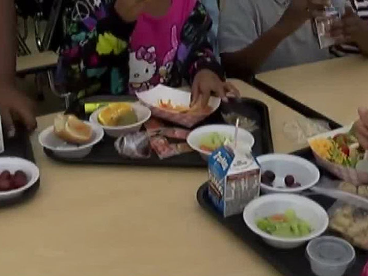 Lemonade for lunches: Ohio family raising money to pay off negative school lunch balances