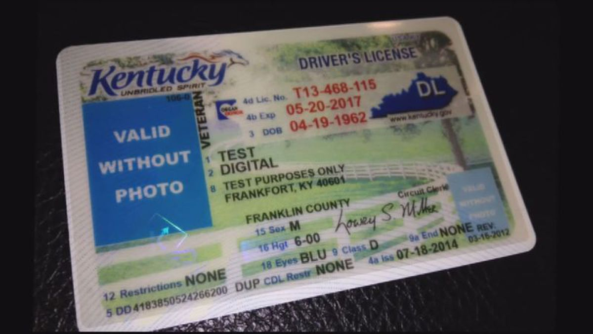 drivers license renewal cost ky
