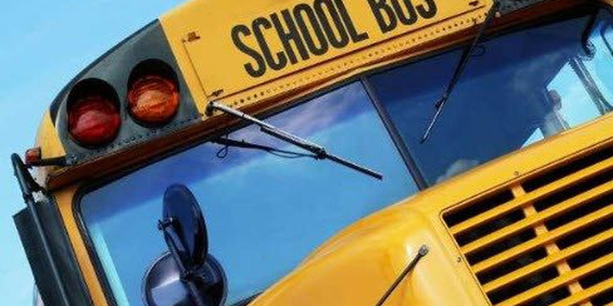 Police: Man with no pants tried to get onto school bus