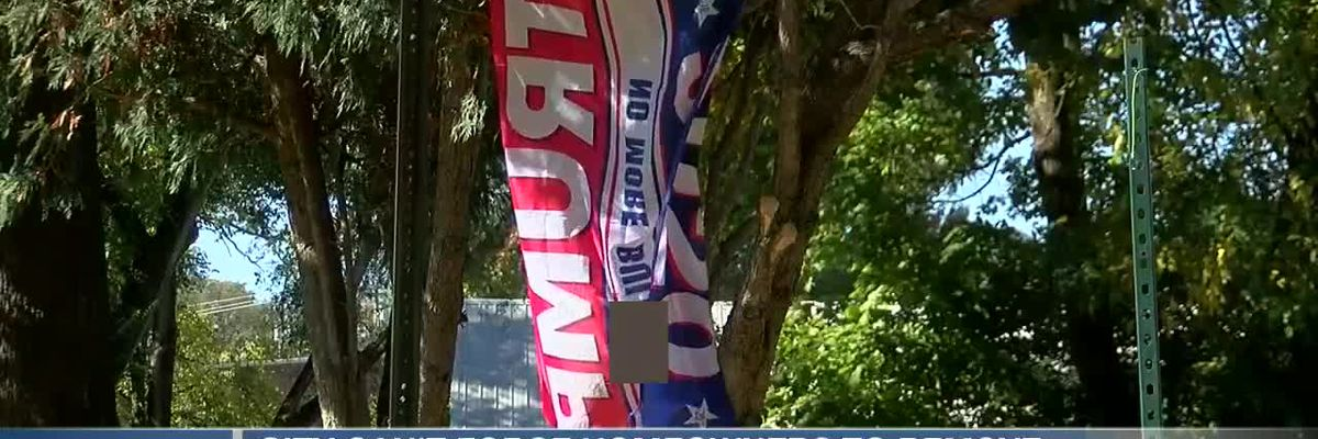 More profanity-filled political signs appearing in Mason