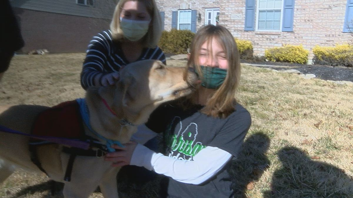 Young girl in need of service dog asks for community's help