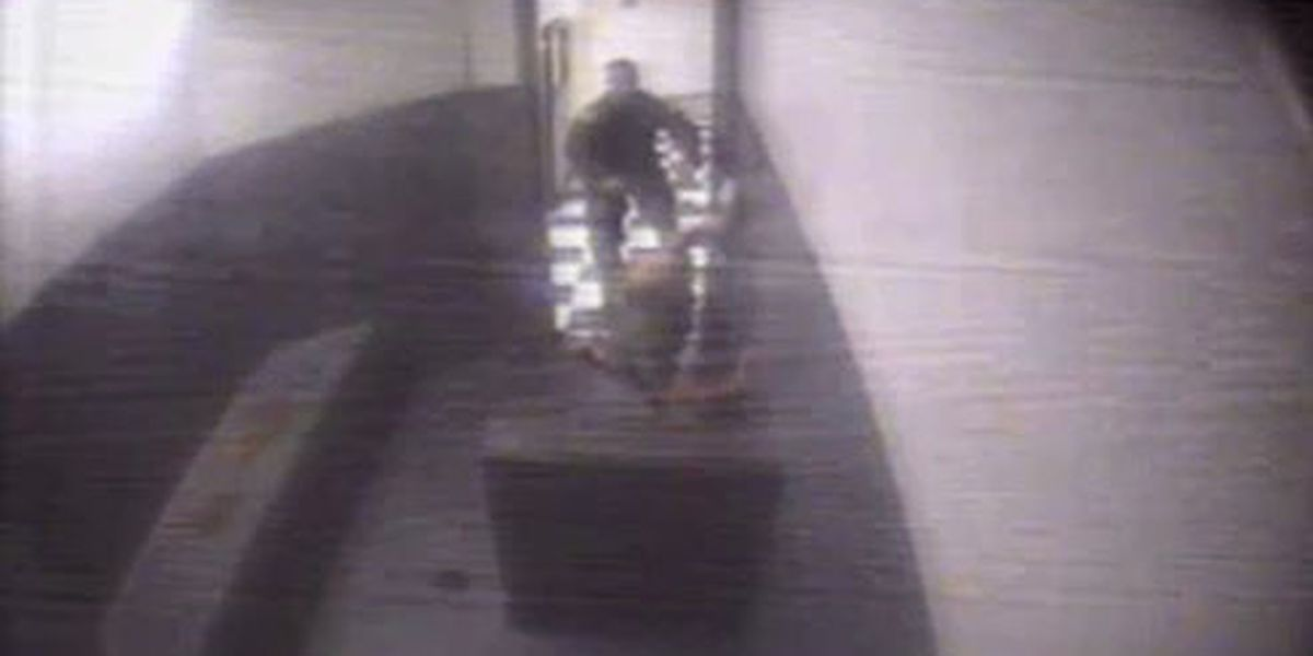 Deputy, sheriff facing federal lawsuit for use of excessive force