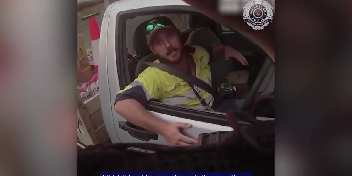 RAW: Australian driver fights off one of the deadliest snakes in the world