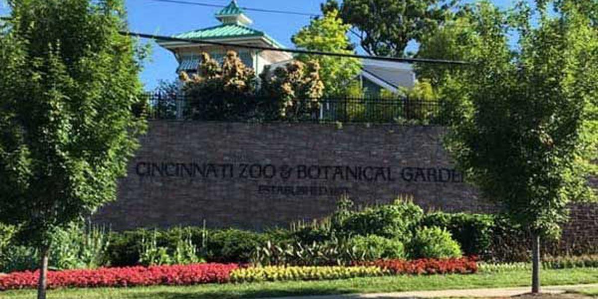 $1 admission to Cincinnati Zoo Wednesday
