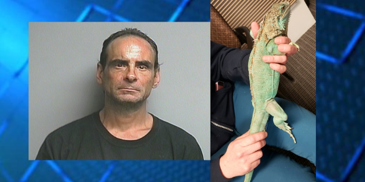 Man pleads guilty to throwing iguana at Painesville restaurant manager; ordered not to have animal for 5 years