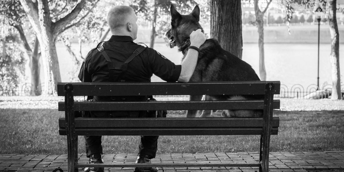 Gallery: Police dog has photo shoot on day before retirement