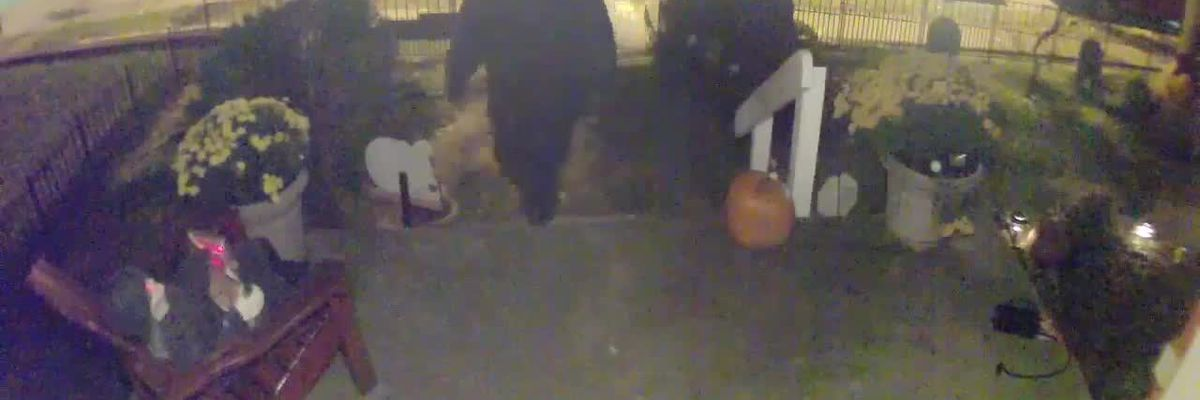 Thief steals Halloween decorations in Covington