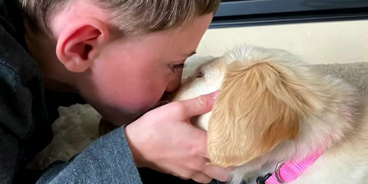 Boy with prosthetic leg gets puppy without a paw