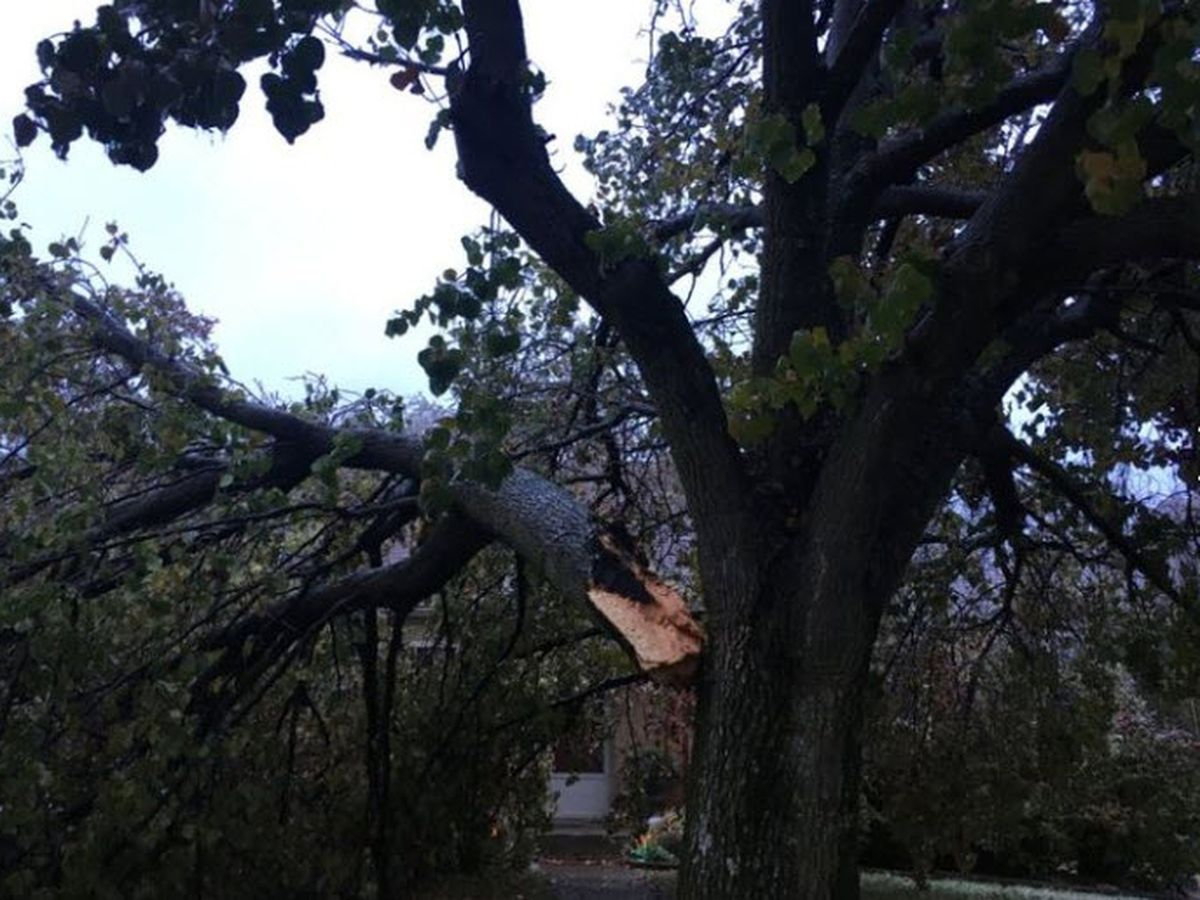 Storm update: Power still out for nearly 24K, lights may not be back on for days