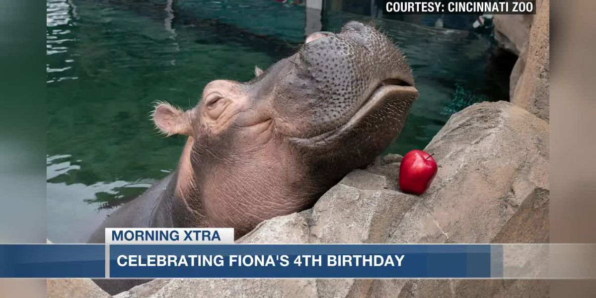 Fiona is turning 4! - Celebrations all week at the Cincinnati Zoo