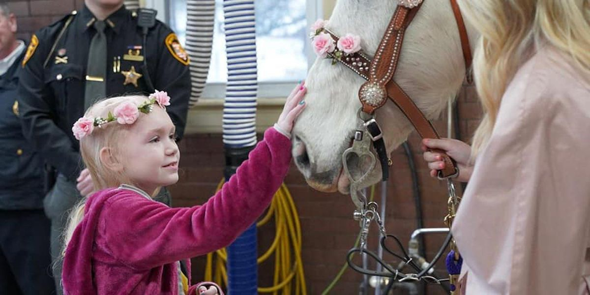 WATCH: 8-year-old Hamilton girl battling brain cancer surprised with unicorn encounter, taken to princess ball