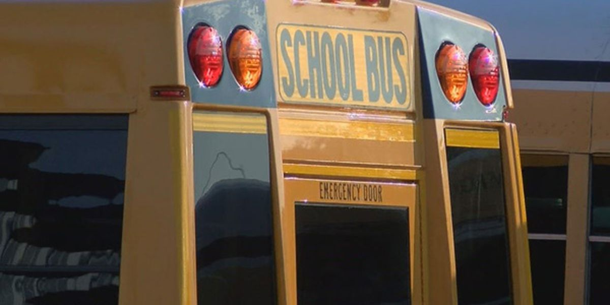 Child with special needs sent home on wrong bus after school in Hamilton