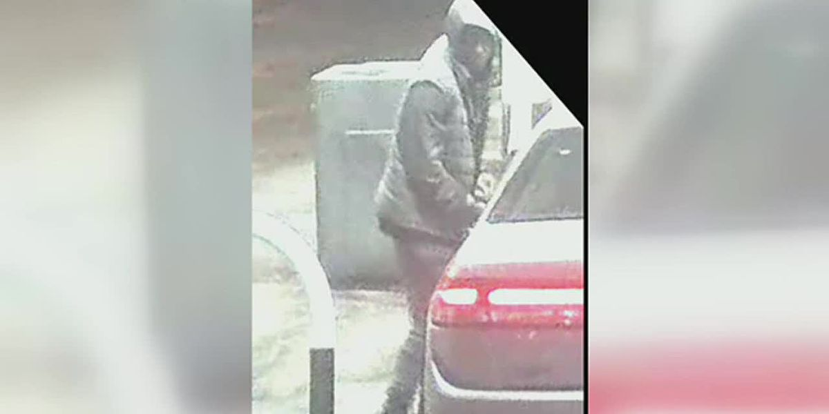 Police search for carjacker
