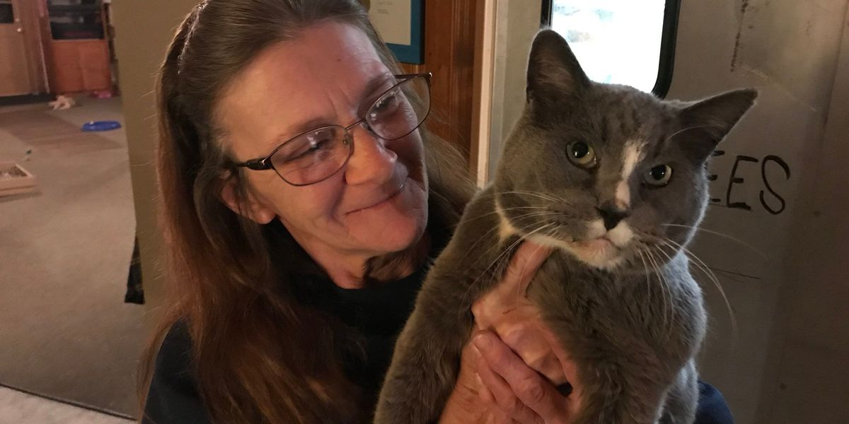 Firefighters help New Richmond woman with 'operation cat rescue' amid flooding