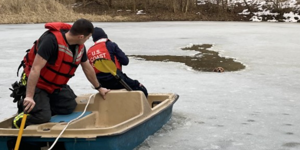 Sally the dog saved after falling into icy Tri-State lake