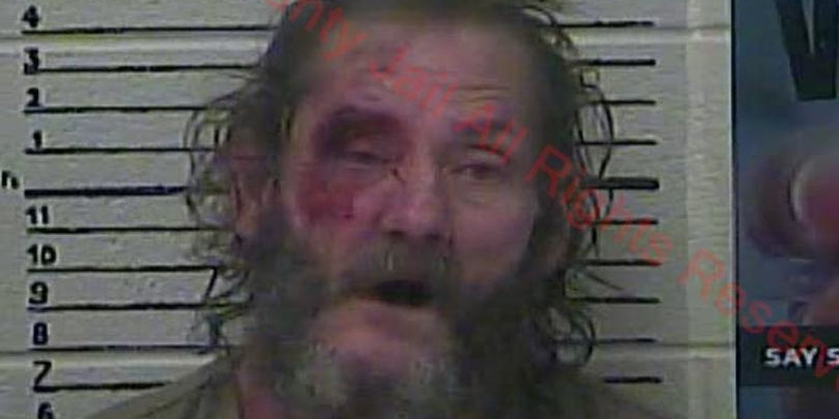 Police say man tried hitting officer, K9 with wooden board filled with nails