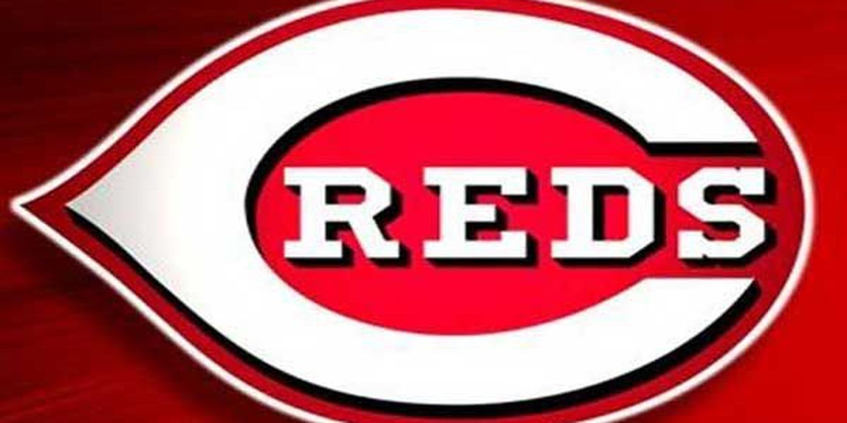 Reds hitting coach out after one year