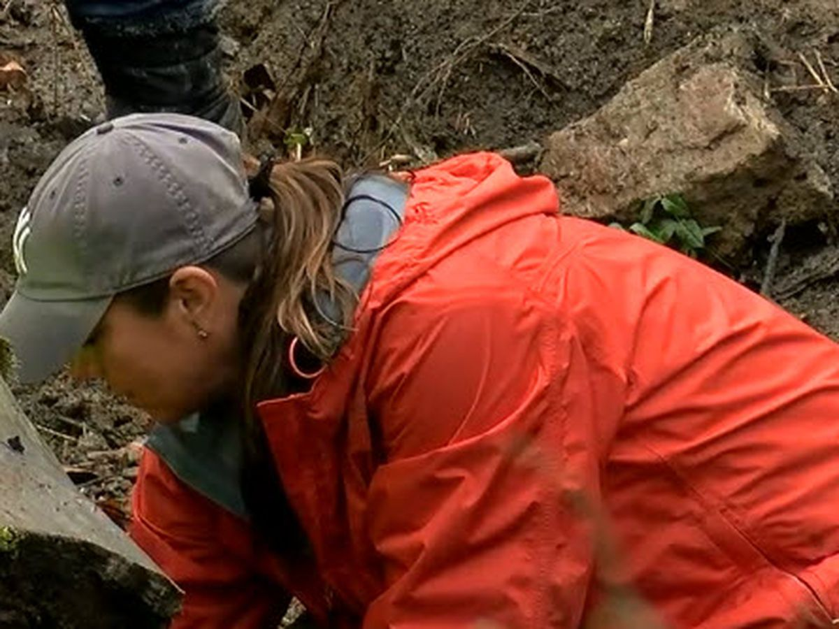 Missing persons nonprofit seen searching area where bones found in Delhi Twp