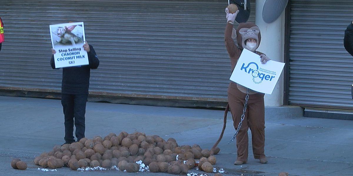 Coconuts dumped outside Kroger headquarters as PETA protests forced monkey labor