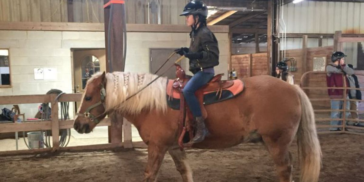 Horse program changing lives at New Day in NKY
