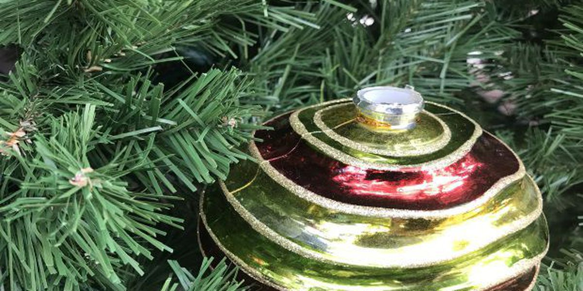 Holiday tree arrives on Fountain Square Saturday