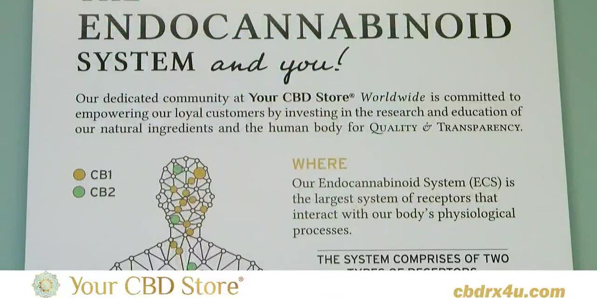 Your CBD Store - Tinctures Broad and Full Spectrum