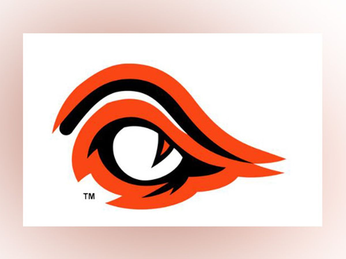 Anderson High School reveals new mascot