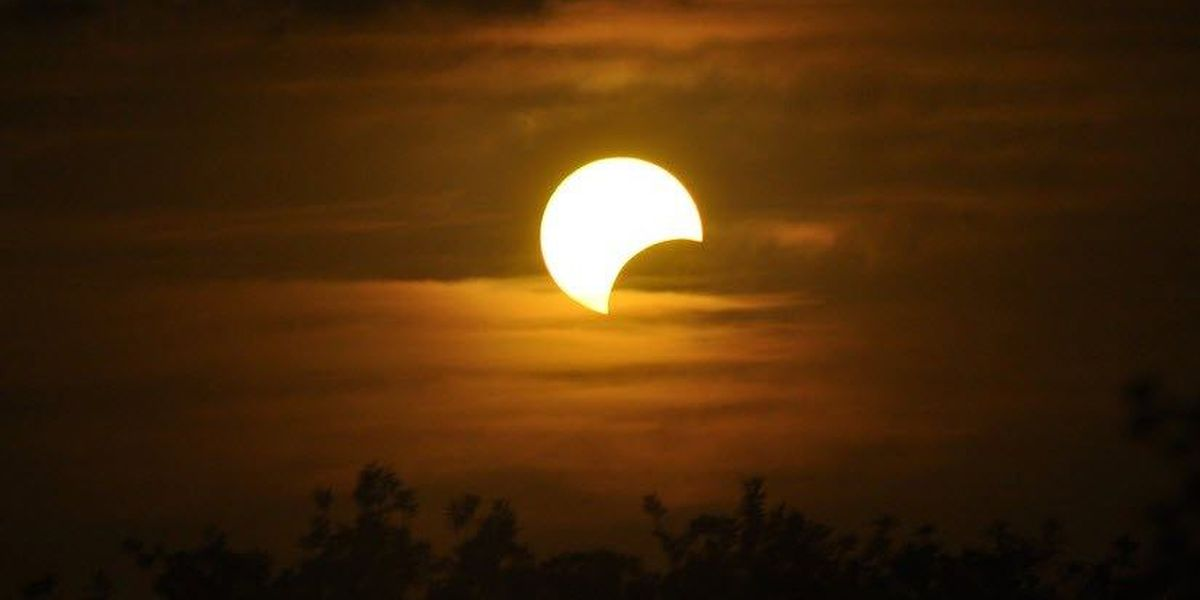 Public libraries offering free glasses to view the solar eclipse