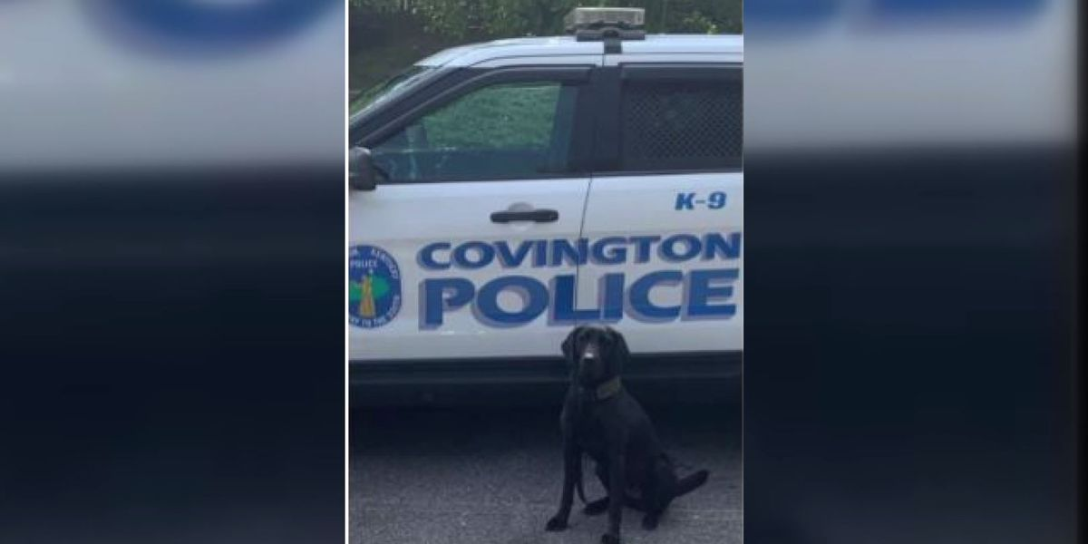 Covington Police Department K9 to receive body armor donation