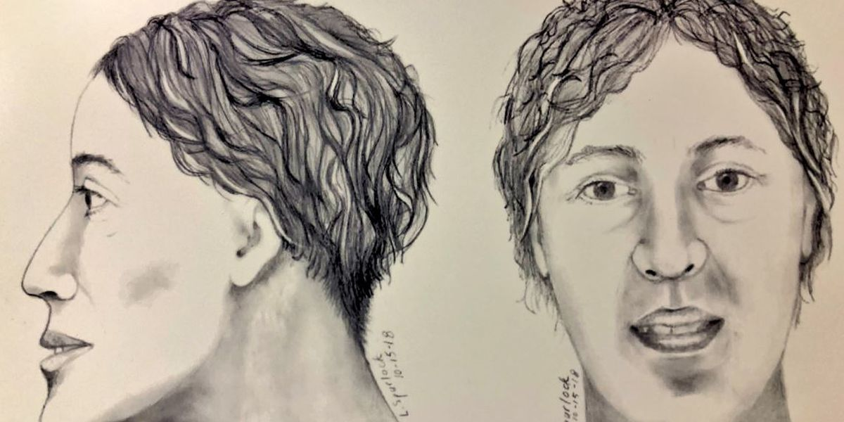 Coroner seeks help identifying woman's body found by children playing in North Avondale