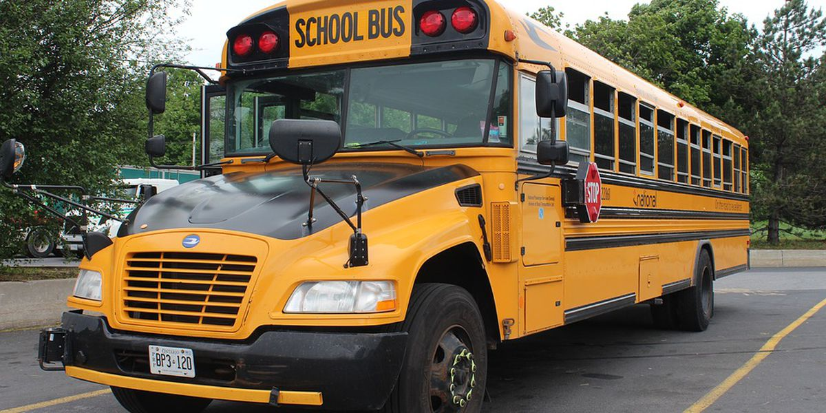 Seat belts on school buses coming to a Northeast Ohio district as a pilot project