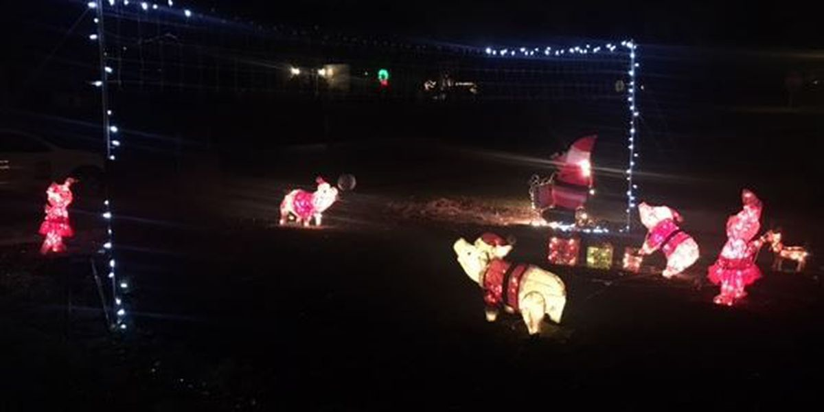 Real-life 'Grinch' steals unique pig decorations at Liberty Twp. home