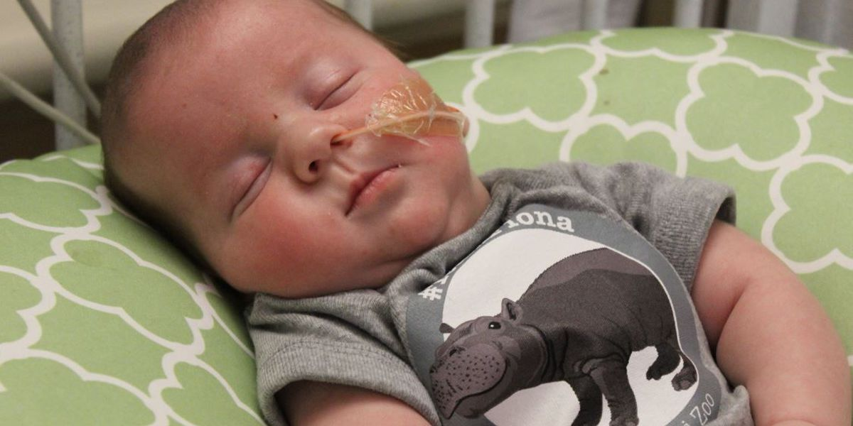 Cincinnati Zoo gifts #TeamFiona onesies to preemies
