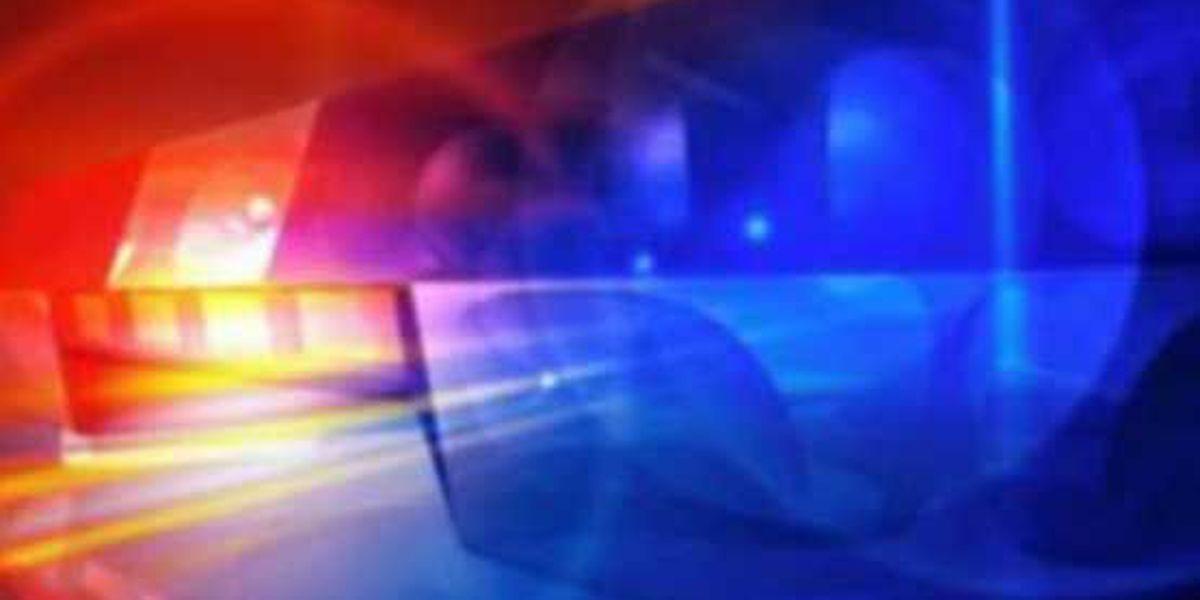 13 arrested in Norwood drug bust