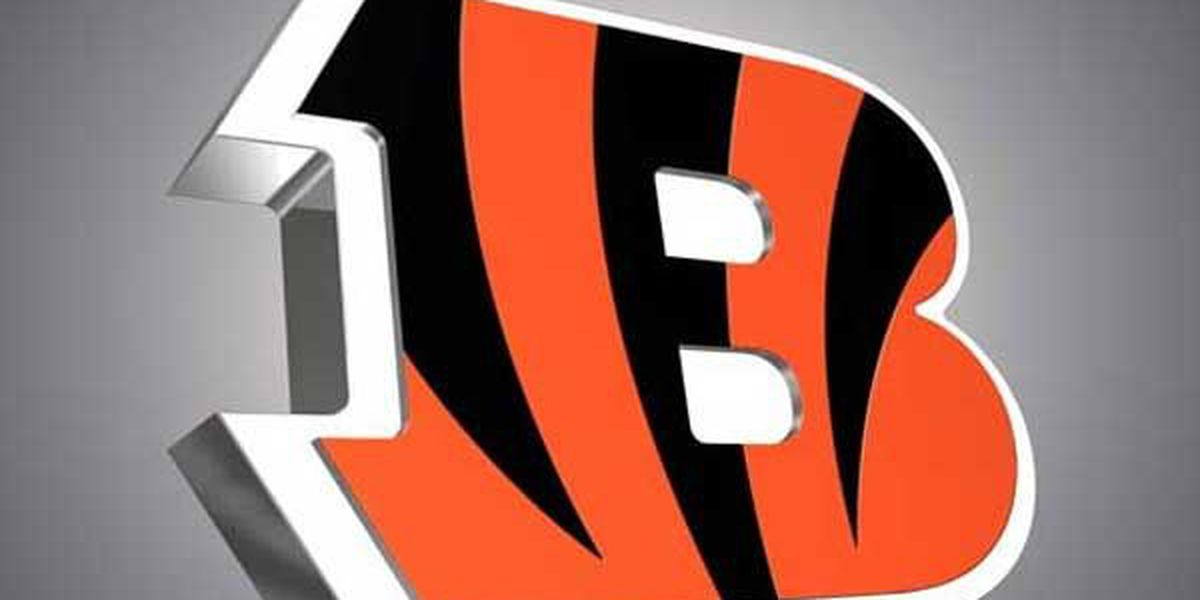 Bengals sign four undrafted rookies
