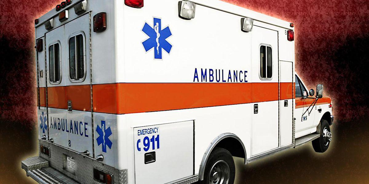 KSP: 1 dead in single-vehicle Pendleton County crash