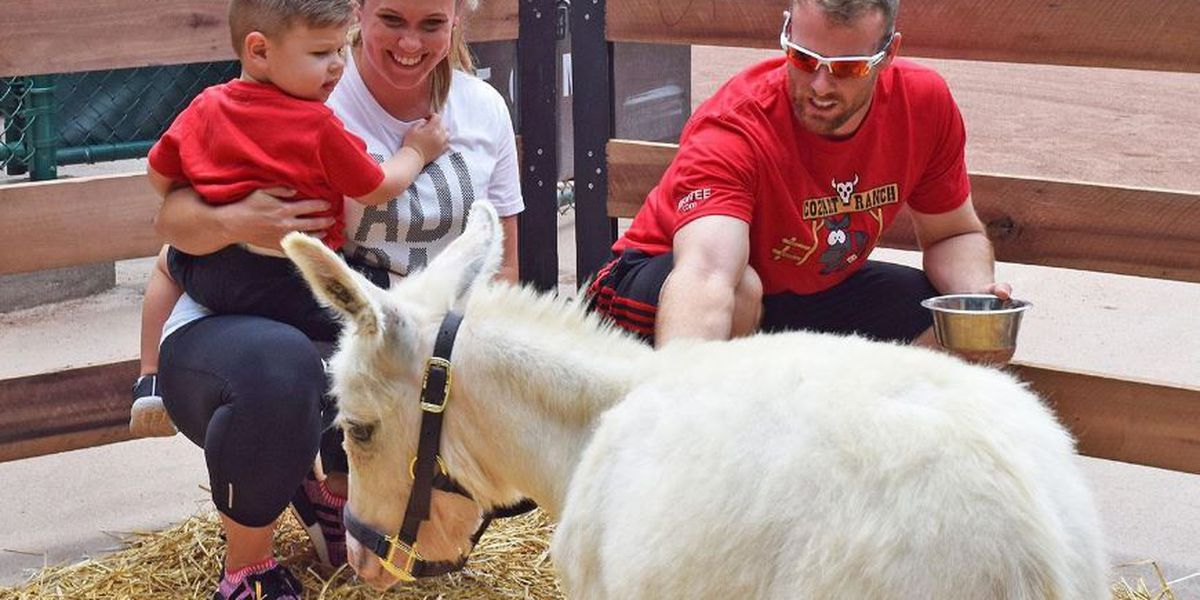The Cozart family donkey has a name
