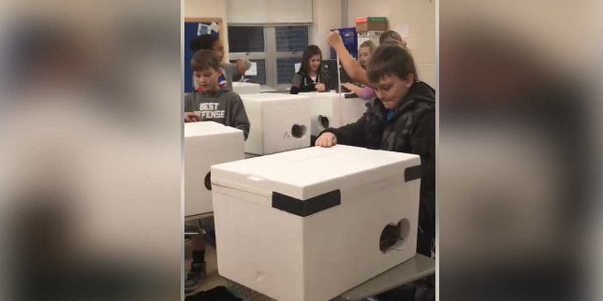 Local 'Coolers for Kitties' project garners national attention