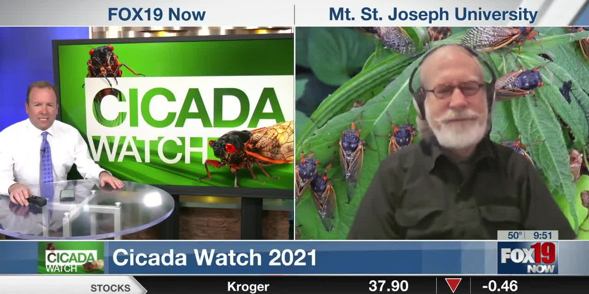 Dr. Gene Kritsky with an update on the arrival of Brood X Cicadas