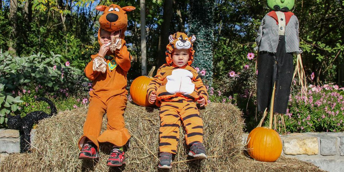 "Cincinnati Zoo & ""BOO-tanical"" Garden announces dates for HallZooween"