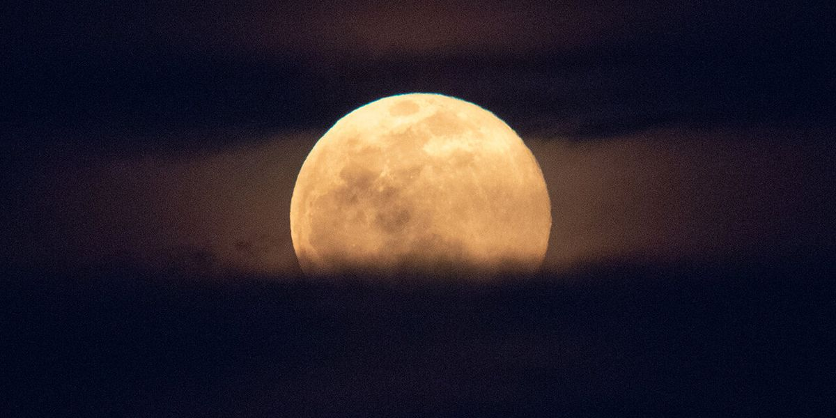 Super Pink Moon on display Monday night