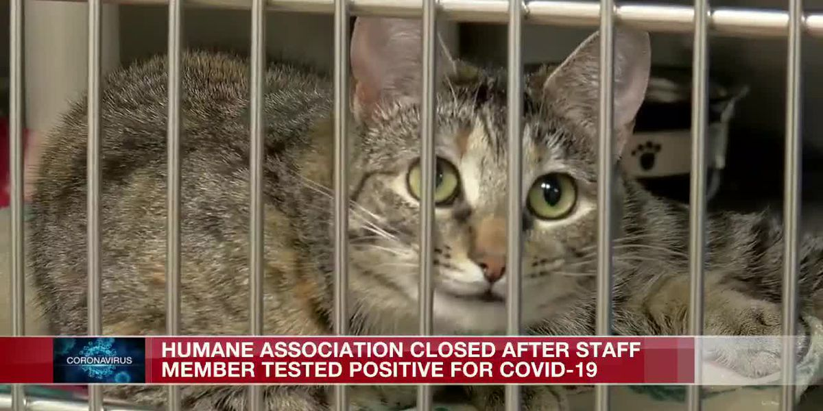 Humane Association closed after staff member tests positive for COVID-19