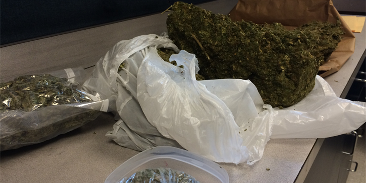 Officers find 6 lbs of weed in Newport traffic stop