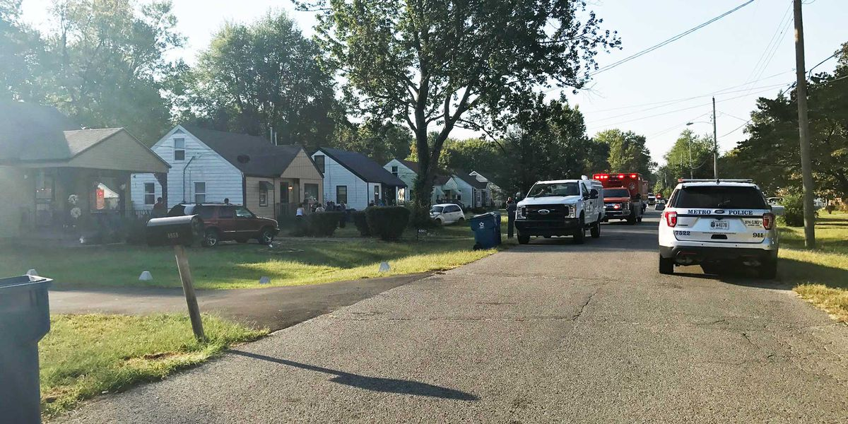 Police: No charges in death of child mauled by family dogs