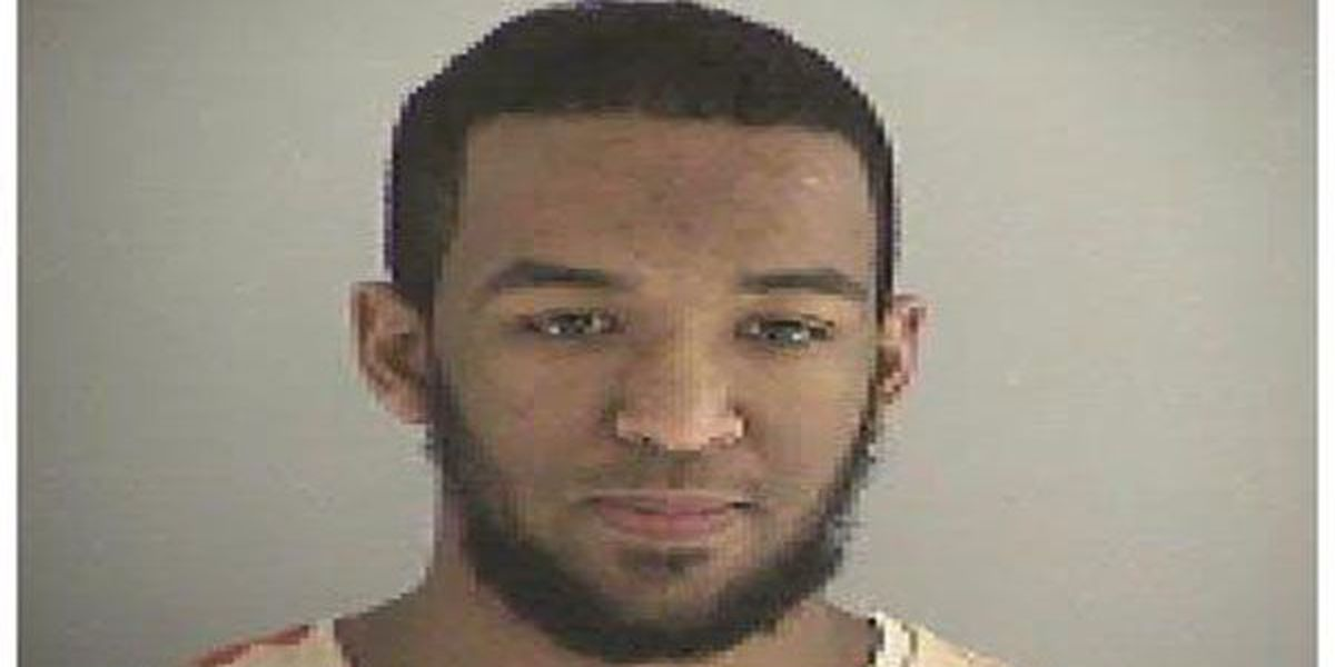DOJ: West Chester man pleads guilty to plotting ISIL-inspired attack