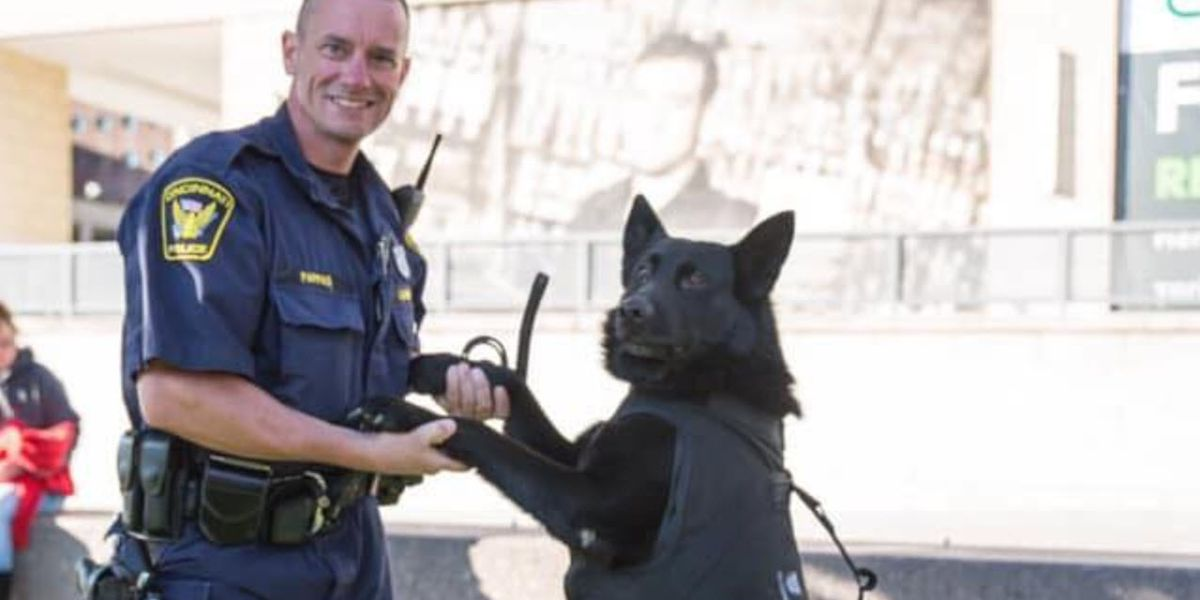 CPD announces death of Jaeger, a retired police K-9 officer