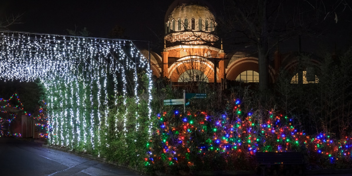 PNC Festival of Lights at the Cincinnati Zoo voted best in the nation