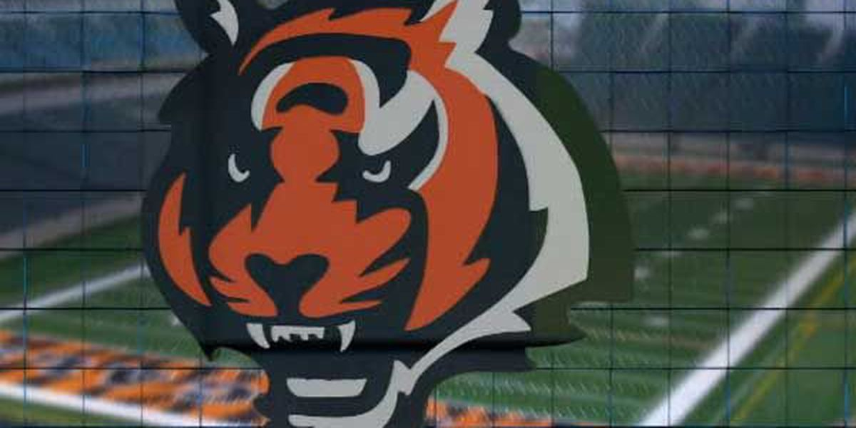 Bengals set fan schedule for training camp