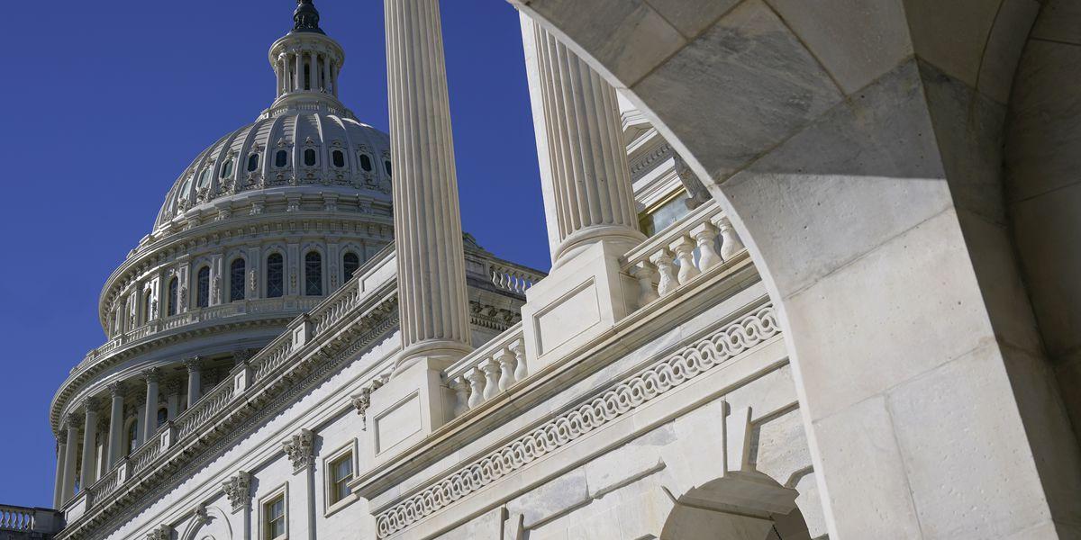 Senate begins considering Democrats' $1.9T virus relief, stimulus checks bill