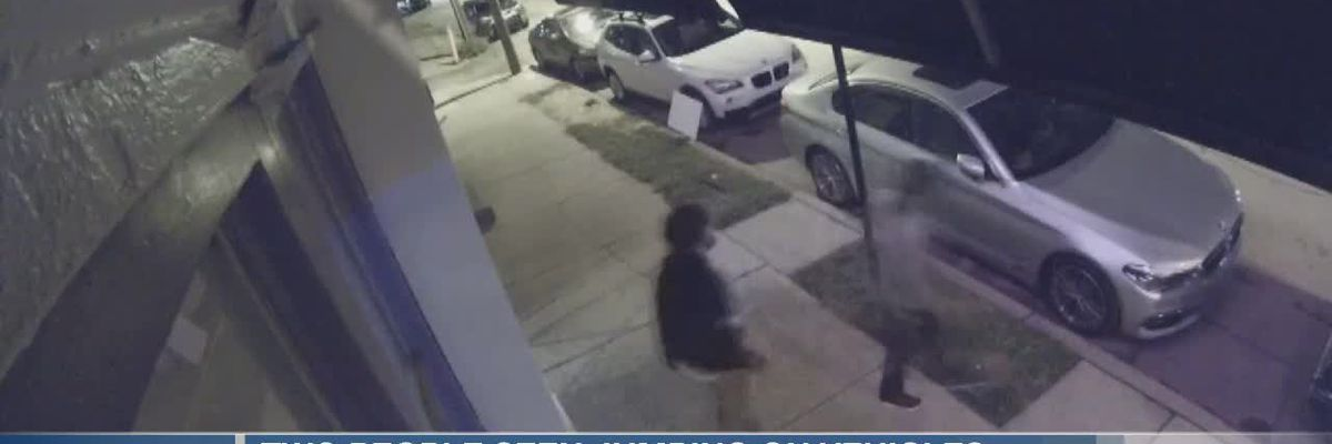 Police looking for the people who jumped on cars, smashed windshields
